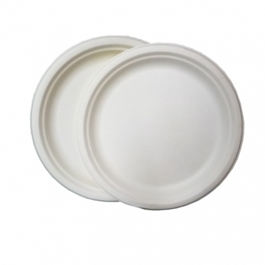 χάρτινα πιάτα μιας χρήσης